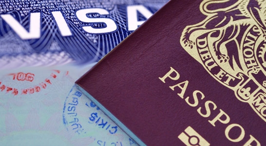 Vietnam Business Visa 1 Month-Single Entry